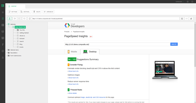 Google Page Insights View